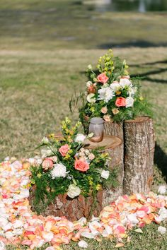 Peach, Cream and Orange Outdoor Rustic Backyard Tampa Bay Wedding Ivory and Peach Rustic Floral Wedding Ceremony Decor on Tree Stumps with Rose Petals Rustic Peach Wedding, Peach Wedding Colors, Floral Wedding, Wedding Flowers, Rustic Outside Wedding, Peach Weddings, Wedding Altars, Tree Wedding, Tree Stump Decor
