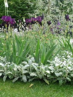 Ulf Nordfjell's Chelsea flower show garden 2009
