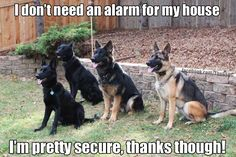 I got all the security I need!
