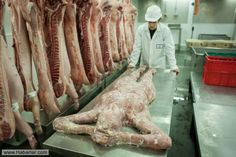 İnsan Eti Kasabı !!