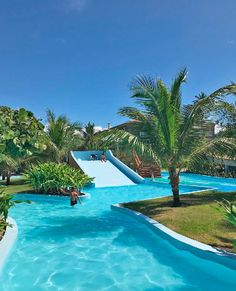 Lazy River Pool, Paradise Pools, Tree House Plans, Water Playground, Beautiful Places To Travel, Cool Pools, Outdoor Fun, Beach Resorts, Dream Vacations