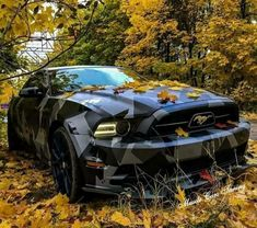 Mustang - Best Luxury Cars - ℛℰ℘i ℕnℰD by Averson Automotive Group LLC Exotic Sports Cars, Cool Sports Cars, Luxury Sports Cars, Sport Cars, Exotic Cars, Cool Cars, Carros Lamborghini, Lamborghini Cars, Ferrari