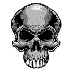 Skull - Jared Mirabile/Sweyda