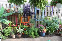Paint old frames bright colors to hide an ugly fence.