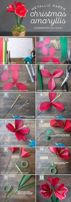 beautiful pictures of michaelsmakers lia griffith paper amaryllis tutorial hd 2017 2018 Tissue Paper Flowers, Paper Roses, Felt Flowers, Diy Flowers, Fabric Flowers, Flower Diy, Flower Paper, Simple Flowers, Felt Flower Template