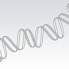 Etikinterview om genmodificerede planter, GMO - Etik og Livets Byggeklodser - Det Etiske Råd