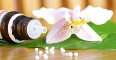 Os princípios da Homeopatia e seus benefícios