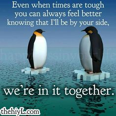 Penguin Love Quotes Interesting Penguin Love Quotes Poems 9699Fd754Dec119Aee4015E53Da2F8  Love