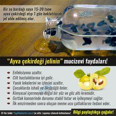 Bir su bardağı suya 15-20 tane çekirdek atıp 1 gün bekletilerek jel elde edilmiş olur. #sağlık #saglik #sağlıkhaberleri #health #healthnews @Sa
