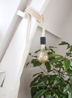 JokJor Gym Lamp