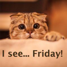 Happy Friday! #TGIF