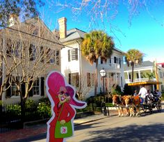 Flat Gloria greets a carriage tour on King St in Charleston on a fine Tuesday morning!