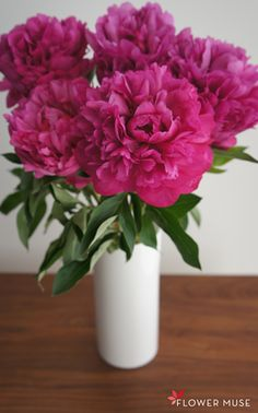 Peonies are locally grown in BC. Here's some care and Handling tips.
