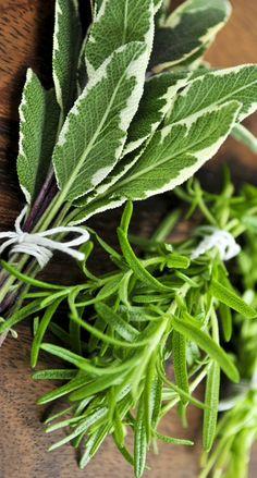 Fresh Herbs for Stuffing Recipe & Garnish