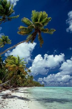 Curieuse in Seychelles | See More Pictures | #SeeMorePictures