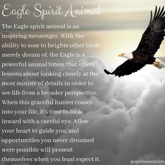 Eagle Spirit Animal The Eagle spirit animal is an inspiring messenger. With the ability to soar to heights other birds merely dream of, the Eagle is a powerful animal totem that offers lessons about looking closely at the Spirit Animal Totem, Animal Spirit Guides, Animal Totems, Eagle Tattoo Girl, Bald Eagle Tattoos, Animal Meanings, Animal Symbolism, Eagle Totem, Spirituality