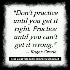 Roger Gracie www.Facebook.com/McDojoLife