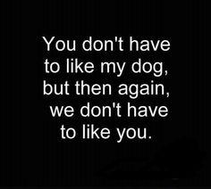 1000 Bulldog Quotes On Pinterest Bulldogs Funny Animal