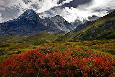 Grindelwald, Switzerland -