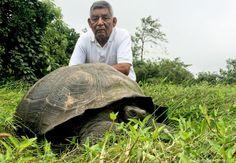 """Planta descubierta en Facebook y tortuga de Galápagos, """"Top Ten"""" de las especies"""