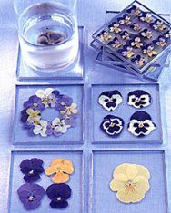 """Hottest Pictures pressed Pansies Strategies Pansies will be the colourful blooms with """"faces."""" A new cool-weather beloved, pansies are perfect for e Dried And Pressed Flowers, Pressed Flower Art, Dried Flowers, Paper Flowers, Home Crafts, Easy Crafts, Diy And Crafts, Arts And Crafts, Craft Projects"""