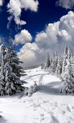 Snow Photography, Landscape Photography, Travel Photography, Winter Scenery, Winter Landscape, Christmas Landscape, Snow Scenes, Winter Pictures, Nature Scenes