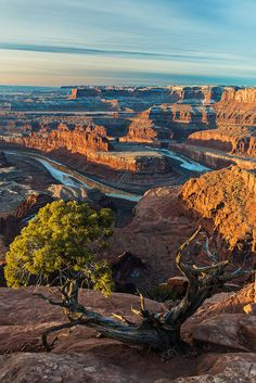 Overlook at Dead Horse Point, Moab, Utah. Dead Horse Point State Park is a state park of Utah in the United States, featuring a dramatic overlook of the Colorado River and Canyonlands National Park. The park is so named because of its use as a natural corral by cowboys in the 19th century