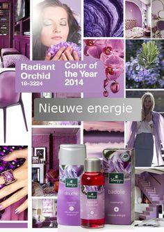#Kneipp #Rosemary #Rozemarijn #RadiantOrchid #impression #energy