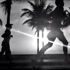 Running by the palms