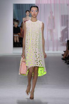 Dior Spring Summer 2013 Ready-to-Wear