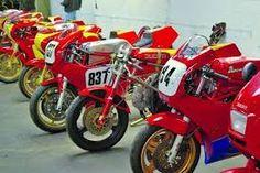 A lot of Ducati TTs