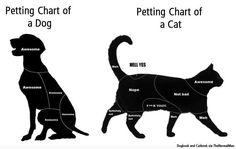 Petting Chart