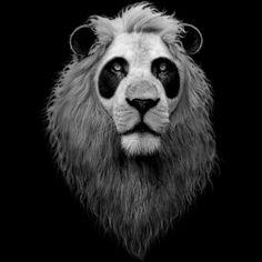 The lion and panda t shirt design