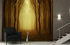 Golden Mist Forest Pathway Wallpaper Wall Mural | Murawall