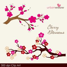 INSTANT DOWNLOAD - Cherry Blossom, BLUSH. Png & Jpeg Clip art for personal and commercial use. on Etsy, $3.64 AUD