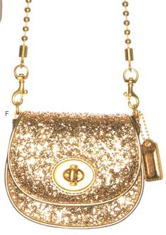 Coach Sparkle Purse