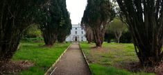This path from the back of The Hall manor house leads to the extensive gardens which are in a state of restoration in Mt. Charles, Co. Donegal, Photo Credit, Paths, Ireland, Irish, Restoration, Sidewalk, Gardens, Summer
