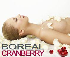 NATUREAL est la 1ère marque de cosmétique à avoir créé une gamme de soins anti-âge bio à la CRANBERRY.