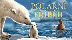 Polární příběh | český dabing Polar Bears, Animals, Animaux, Animales, Animal, Dieren