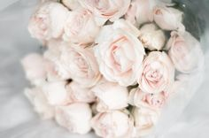 pale pink rose bouquet - photo by robyn thompson via dustjacketattic