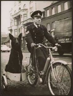 Time to bring back the canine patrols in every city and town.