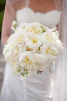 Our wedding experts at Style Me Pretty, share beautiful garden rose bouquet ideas to incorporate into your wedding. Wedding 2015, Rose Wedding, Wedding Trends, Luxury Wedding, Dream Wedding, Wedding Ideas, Wedding Inspiration, Garden Roses Wedding, Wedding Fun
