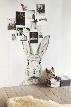 Papel de parede de coelho + fotos na parede #decor #details