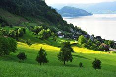 At the foot of Mt Rigi, Vitznau on Lake Lucerne, Switzerland ✯ ωнιмѕу ѕαη∂у