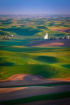 farms, Palouse region of southeastern Washington, north central Idaho
