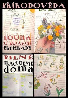 3. Základní škola Holešov - 4B Cover, Books, Libros, Book, Book Illustrations, Libri