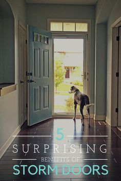 5 Surprising Benefits of Living with Full View Storm Doors - Home Decoration Storm Doors With Screens, Best Storm Doors, Double Storm Doors, Glass Storm Doors, Wood Storm Doors, French Doors With Screens, Black Screen Door, Double Screen Doors, Front Door With Screen