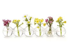 Mothers Day idea - cute image