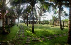 #Garden#GreenOrganicVillas
