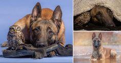 La fotógrafa alemana Tanja Brandt dedicó su carrera a retratar a los animales y la vida silvestre. Dos de sus modelos son sus mascotas Ingo y Napoleón.
